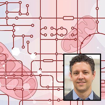 Dave Pagliarini science profile